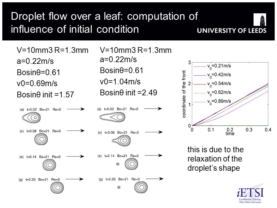 Droplet flow over a leaf: computation of influence of initial condition