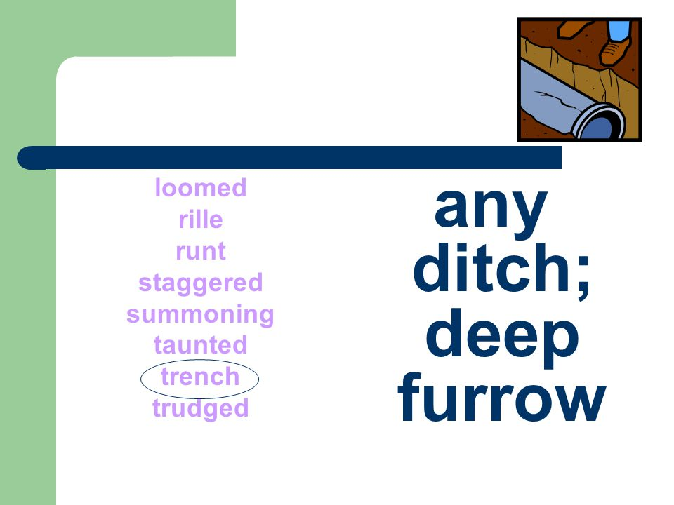 any ditch; deep furrow loomed rille runt staggered summoning taunted
