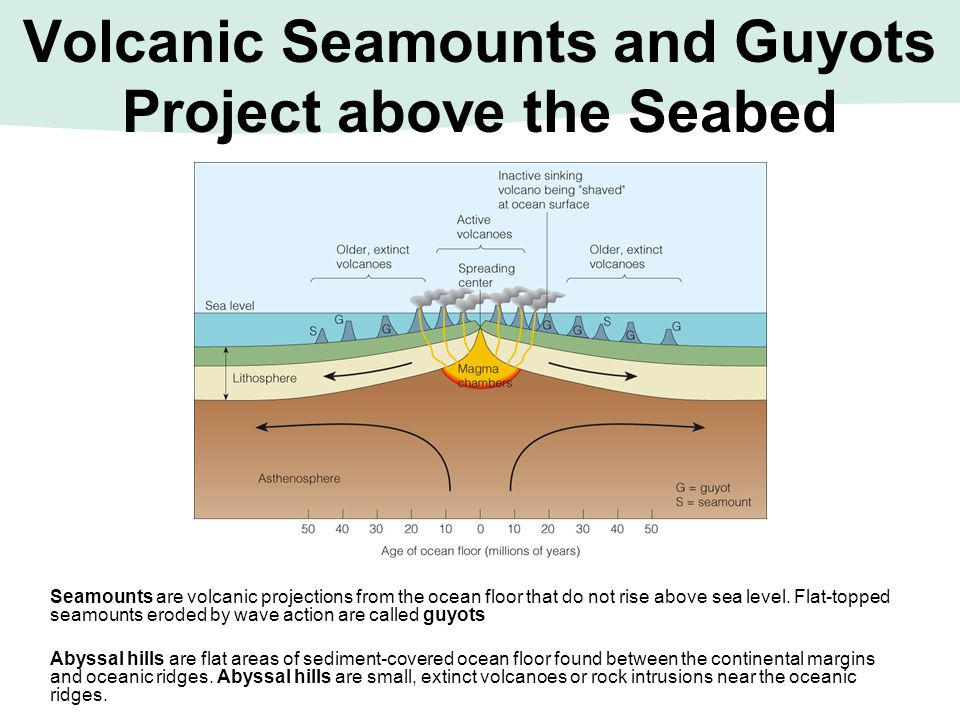 Volcanic Seamounts and Guyots Project above the Seabed