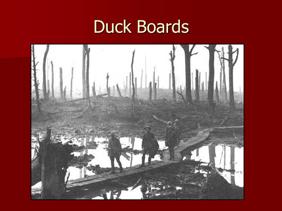 Duck Boards
