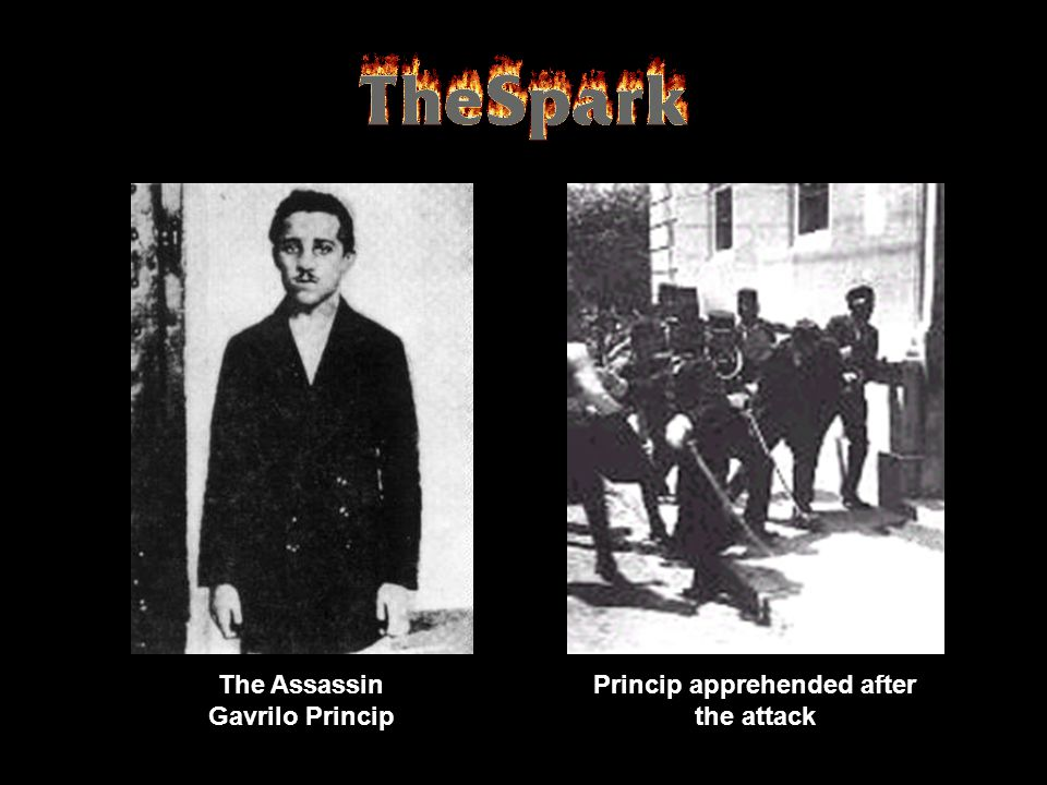 The Assassin Gavrilo Princip Princip apprehended after the attack