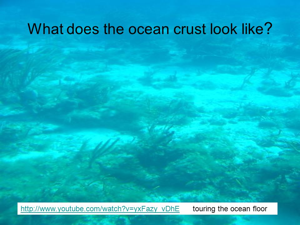What does the ocean crust look like