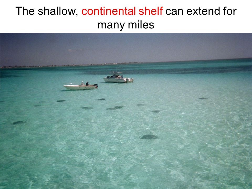 The shallow, continental shelf can extend for many miles