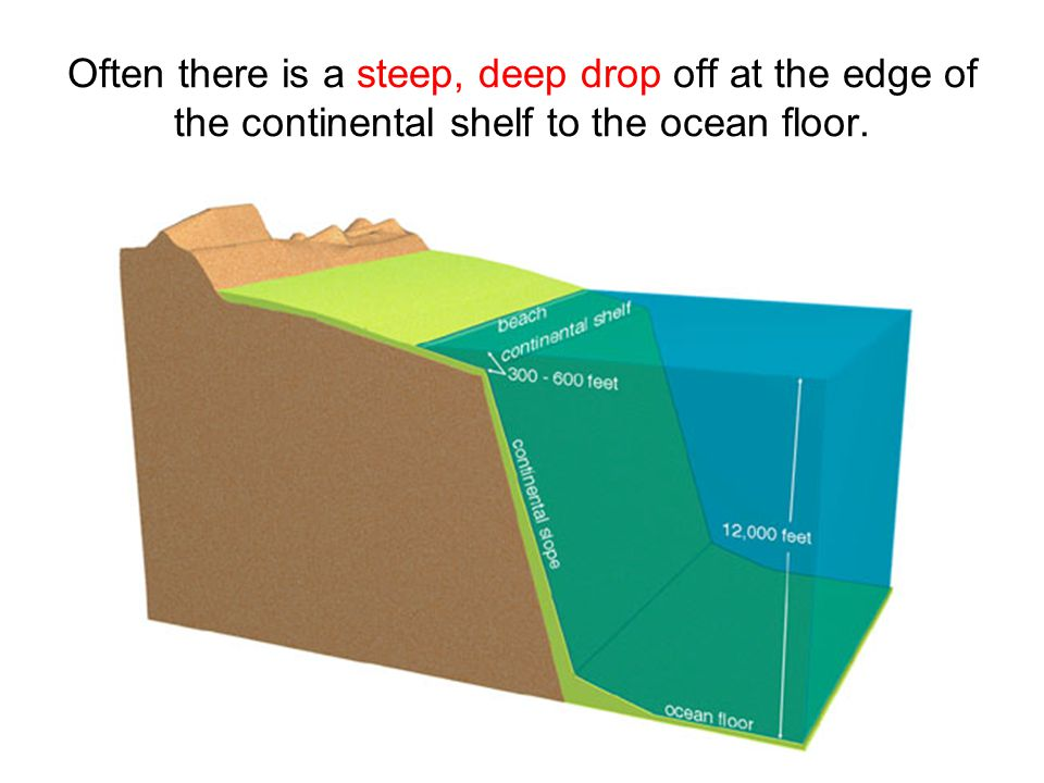 Often there is a steep, deep drop off at the edge of the continental shelf to the ocean floor.