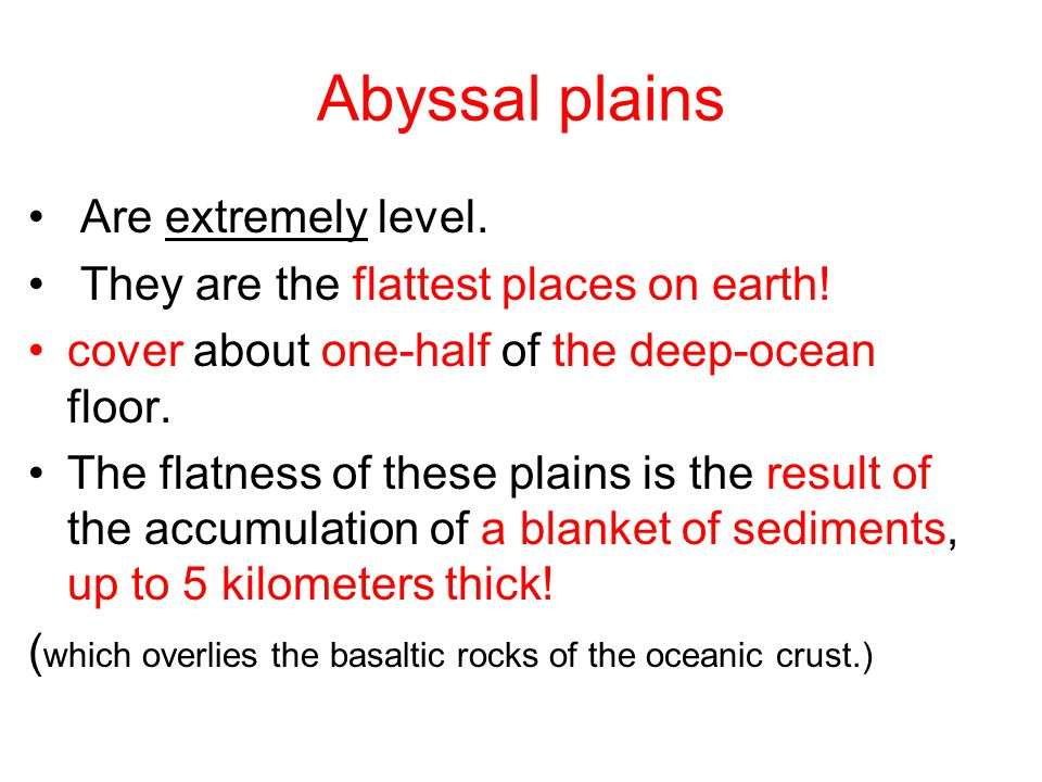 Abyssal plains Are extremely level.