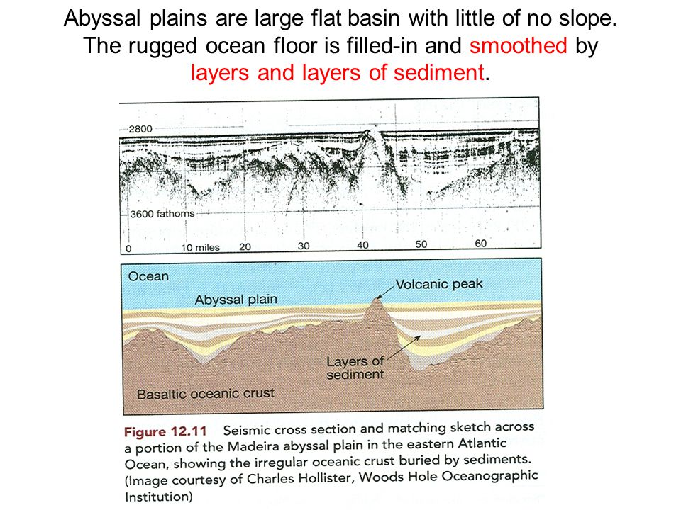 Abyssal plains are large flat basin with little of no slope