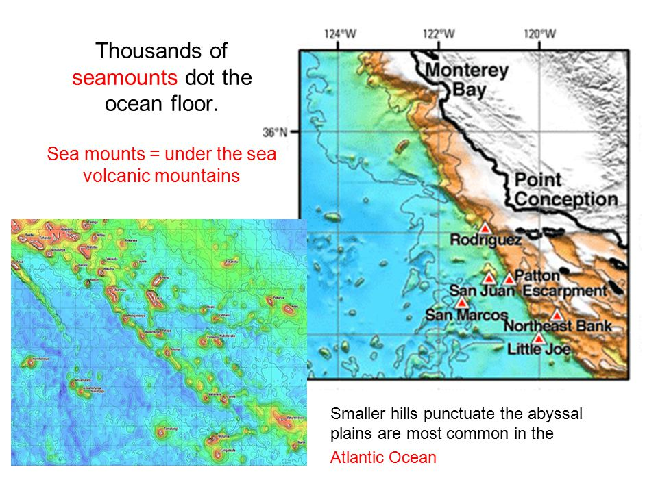 Thousands of seamounts dot the ocean floor