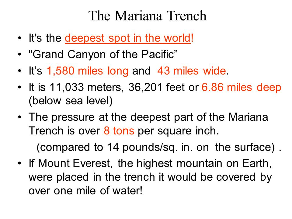 The Mariana Trench It s the deepest spot in the world!