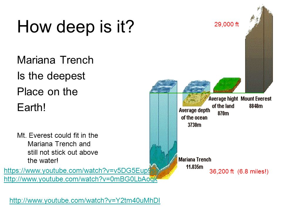 How deep is it Mariana Trench Is the deepest Place on the Earth!