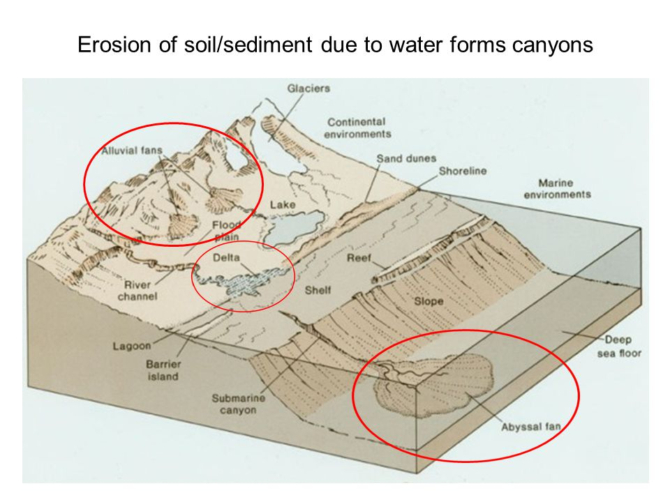 Erosion of soil/sediment due to water forms canyons