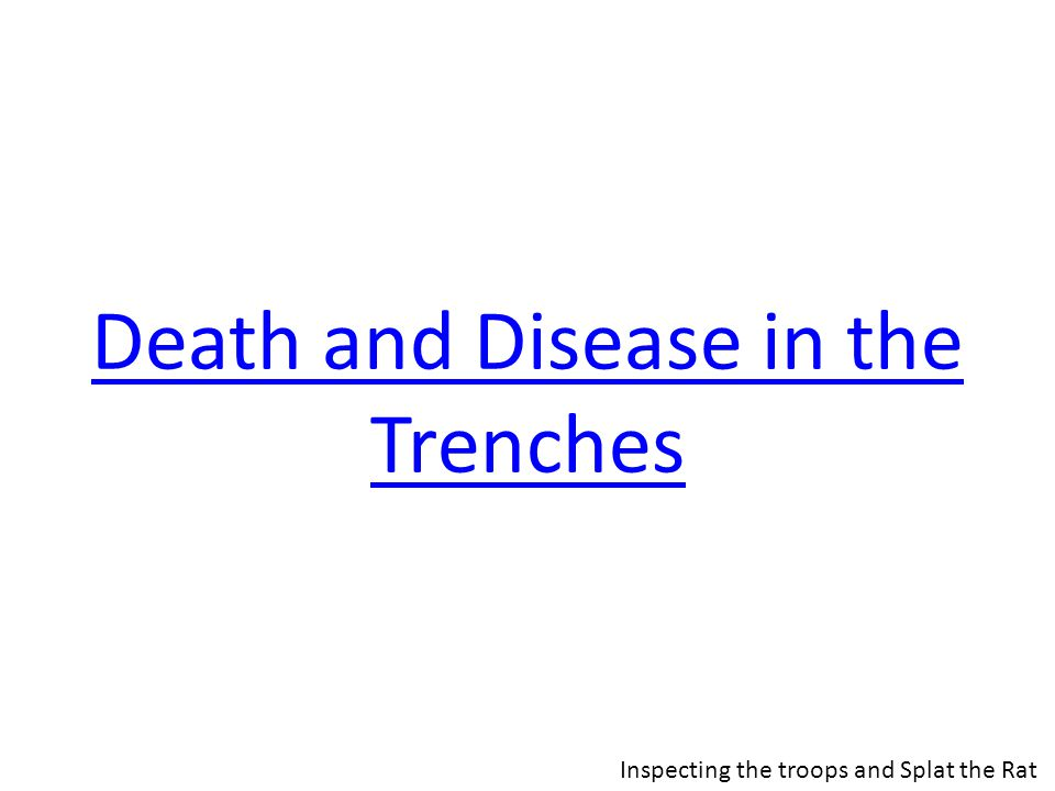 Death and Disease in the Trenches