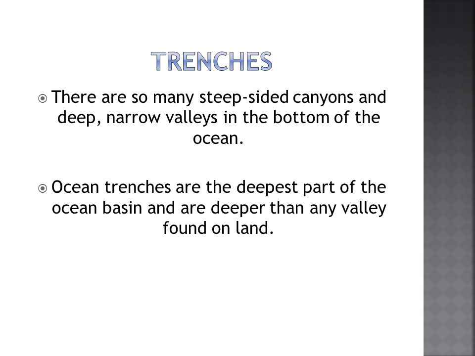 Trenches There are so many steep-sided canyons and deep, narrow valleys in the bottom of the ocean.