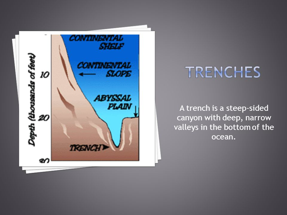Trenches A trench is a steep-sided canyon with deep, narrow valleys in the bottom of the ocean.