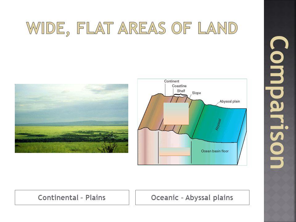 Oceanic – Abyssal plains