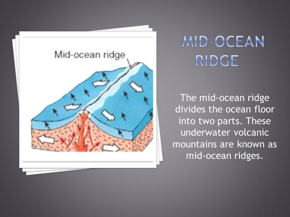 Mid-ocean ridge The mid-ocean ridge divides the ocean floor into two parts.