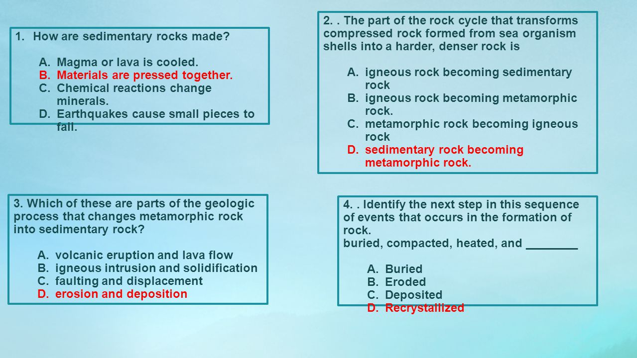 2. . The part of the rock cycle that transforms compressed rock formed from sea organism shells into a harder, denser rock is