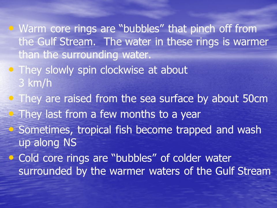 Warm core rings are bubbles that pinch off from the Gulf Stream