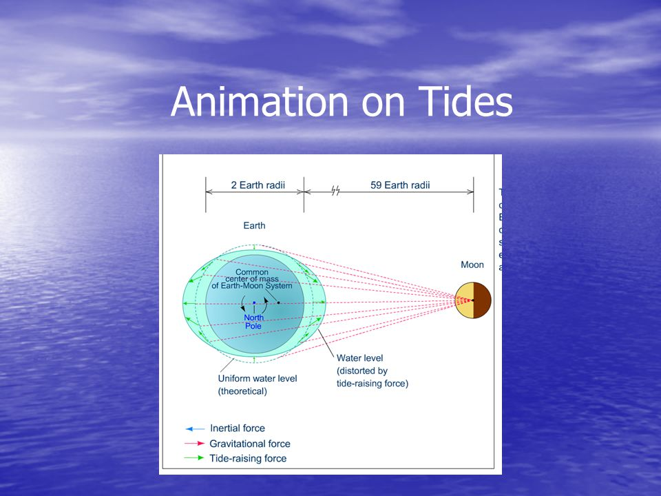 Animation on Tides