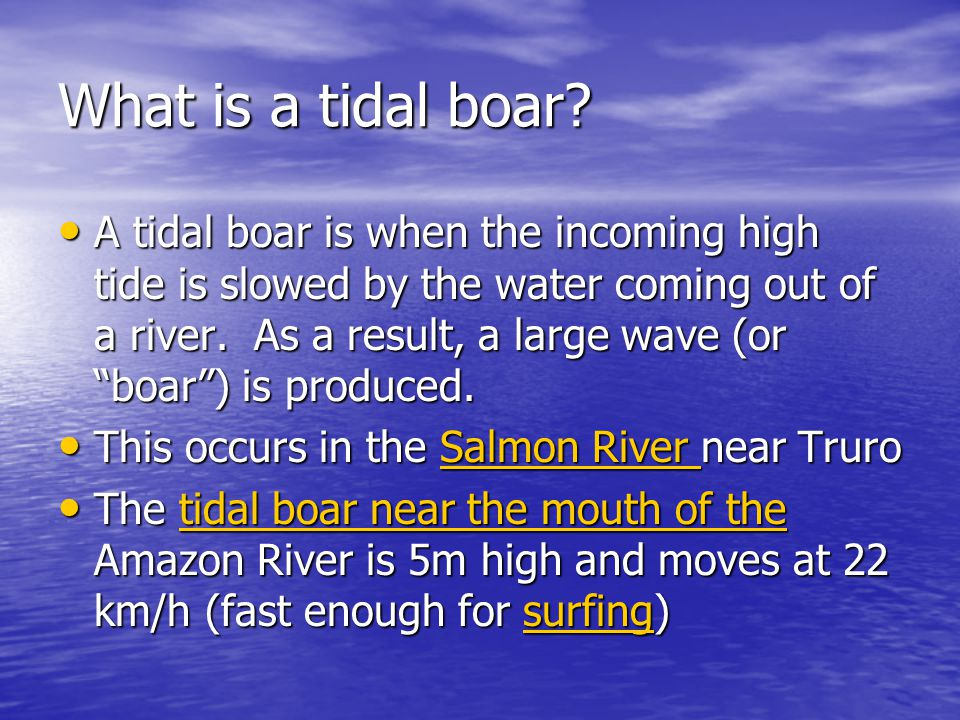 What is a tidal boar