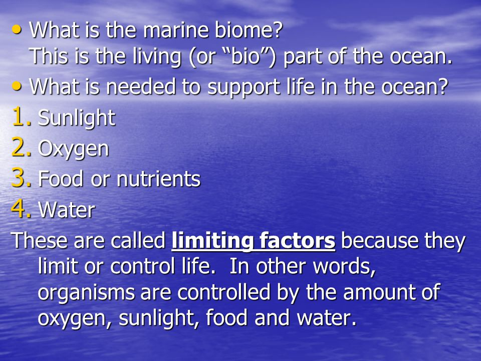 What is the marine biome