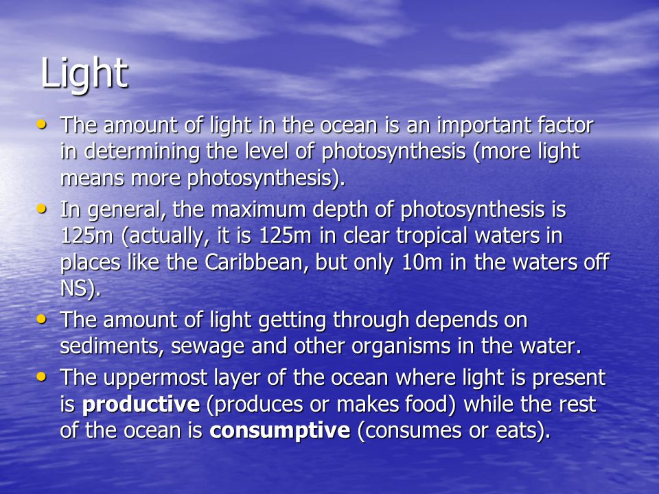 Light The amount of light in the ocean is an important factor in determining the level of photosynthesis (more light means more photosynthesis).