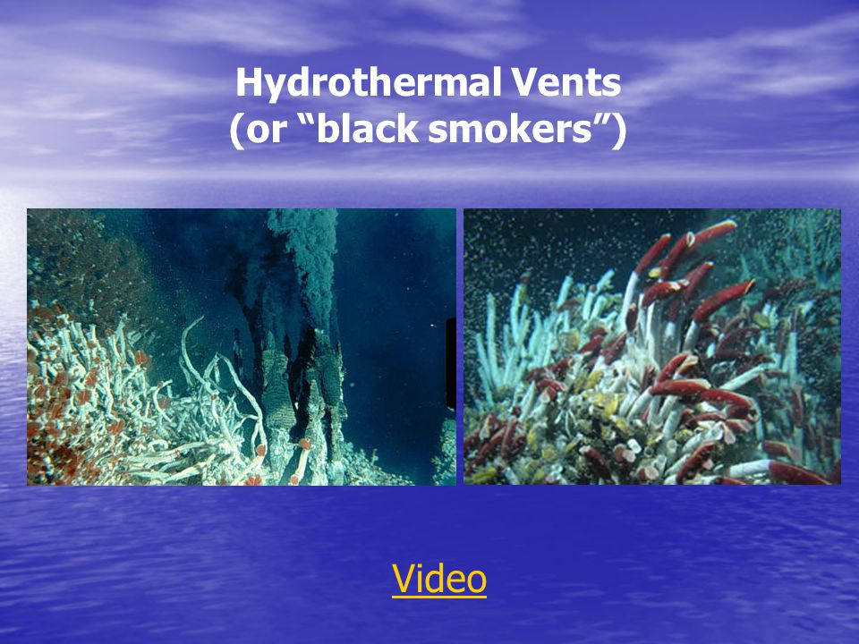 Hydrothermal Vents (or black smokers ) Video