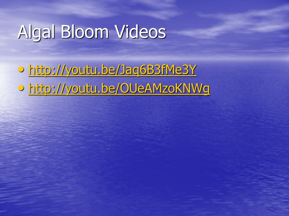 Algal Bloom Videos http://youtu.be/Jaq6B3fMe3Y