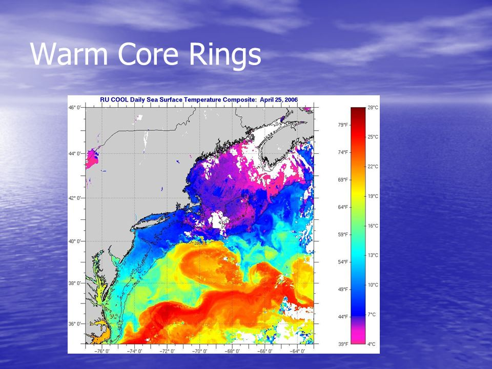 Warm Core Rings