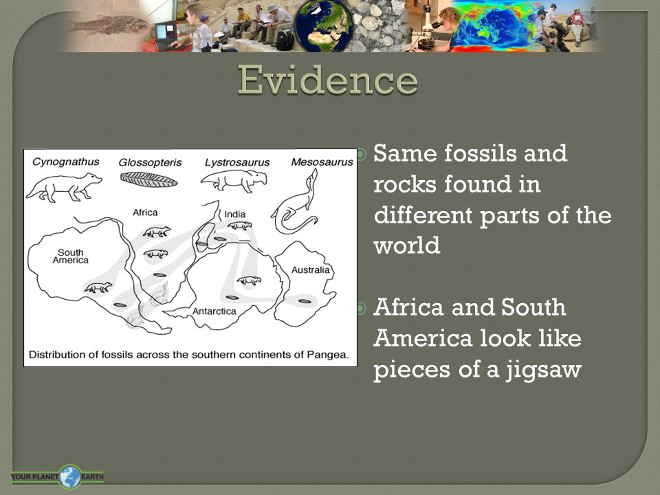 Evidence Same fossils and rocks found in different parts of the world
