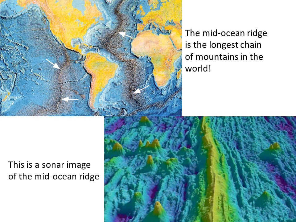 The mid-ocean ridge is the longest chain of mountains in the world!