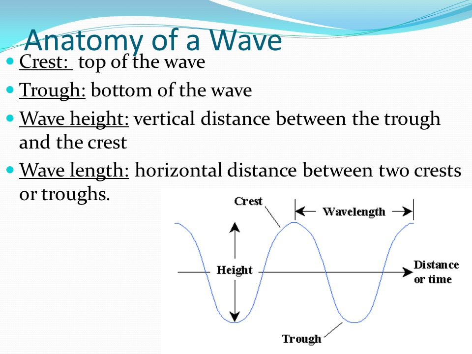 Anatomy of a Wave Crest: top of the wave Trough: bottom of the wave