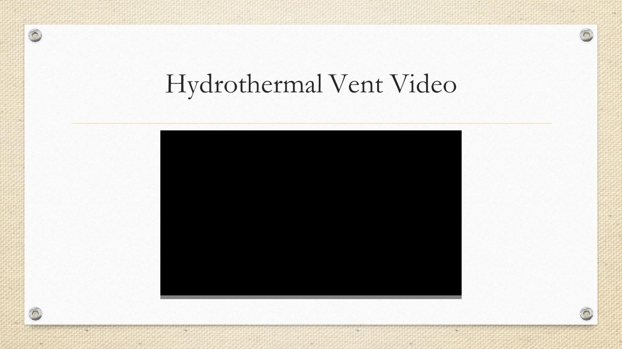 Hydrothermal Vent Video