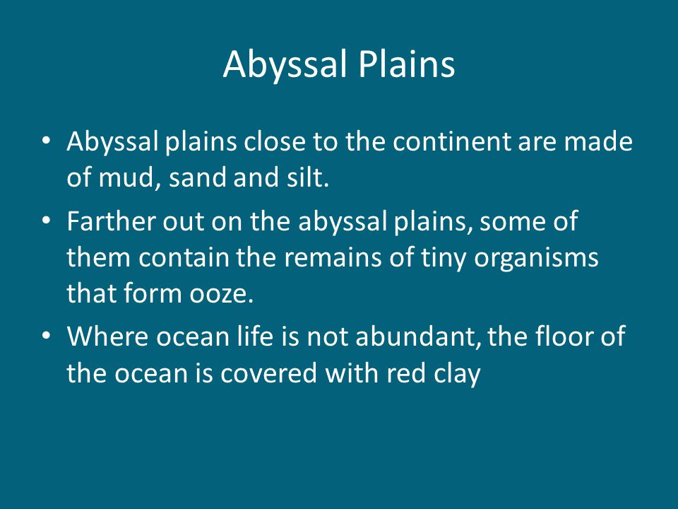 Abyssal Plains Abyssal plains close to the continent are made of mud, sand and silt.
