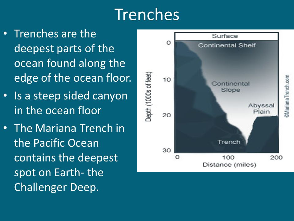 Trenches Trenches are the deepest parts of the ocean found along the edge of the ocean floor. Is a steep sided canyon in the ocean floor.