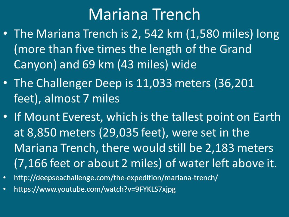 Mariana Trench The Mariana Trench is 2, 542 km (1,580 miles) long (more than five times the length of the Grand Canyon) and 69 km (43 miles) wide.