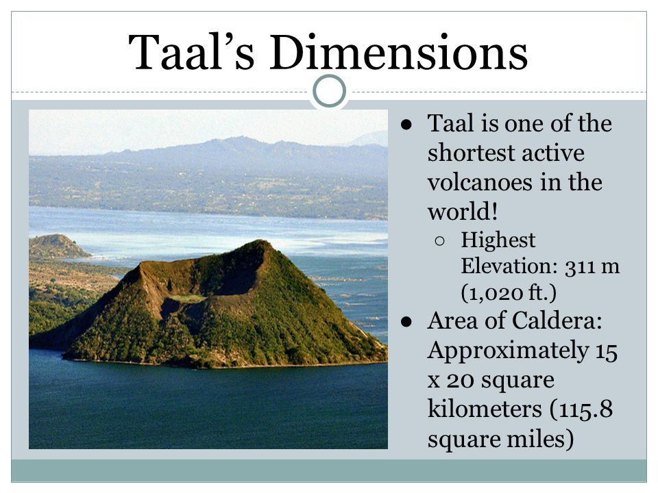 Taal's Dimensions Taal is one of the shortest active volcanoes in the world! Highest Elevation: 311 m (1,020 ft.)