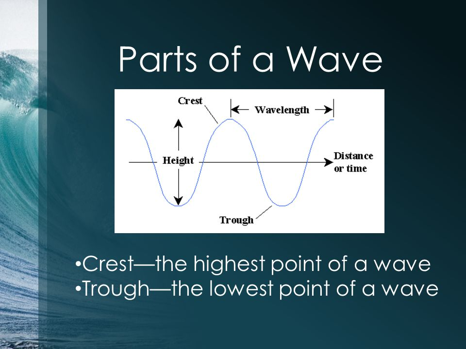 Parts of a Wave Crest—the highest point of a wave