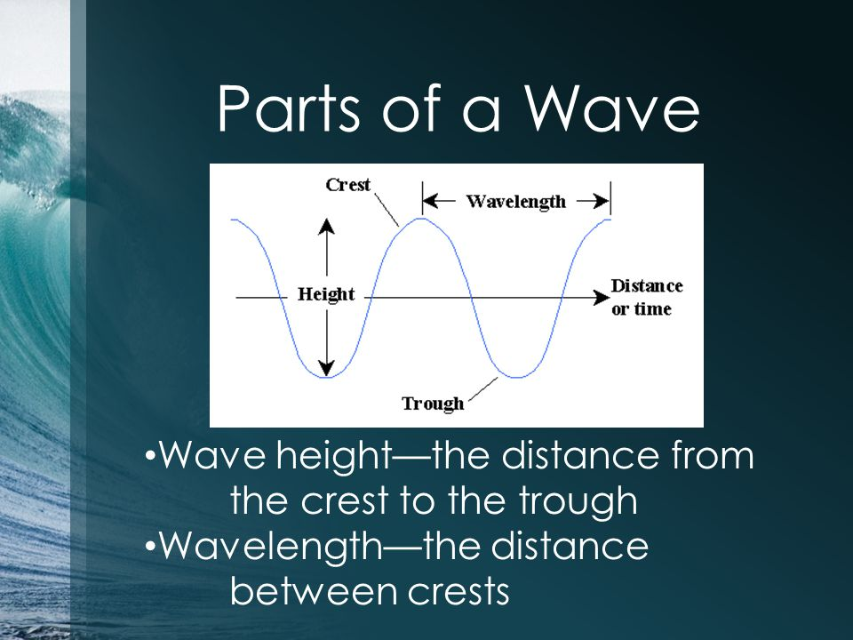 Parts of a Wave Wave height—the distance from the crest to the trough