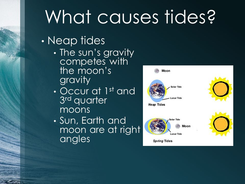 What causes tides Neap tides