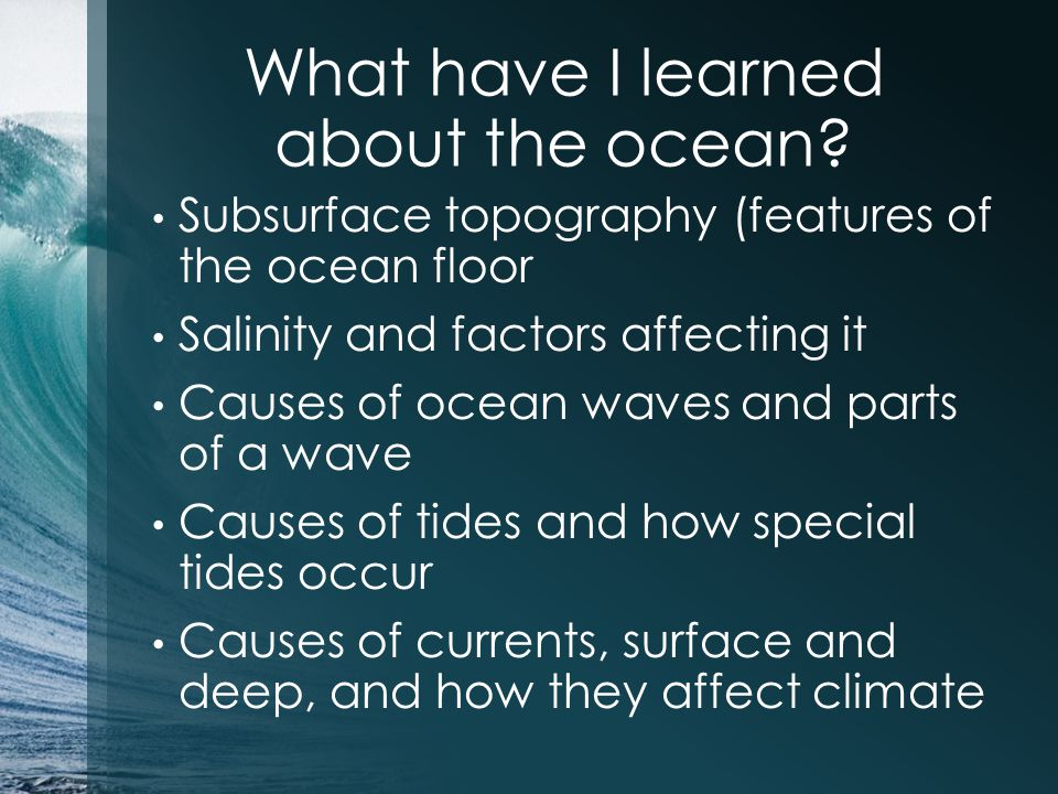 What have I learned about the ocean