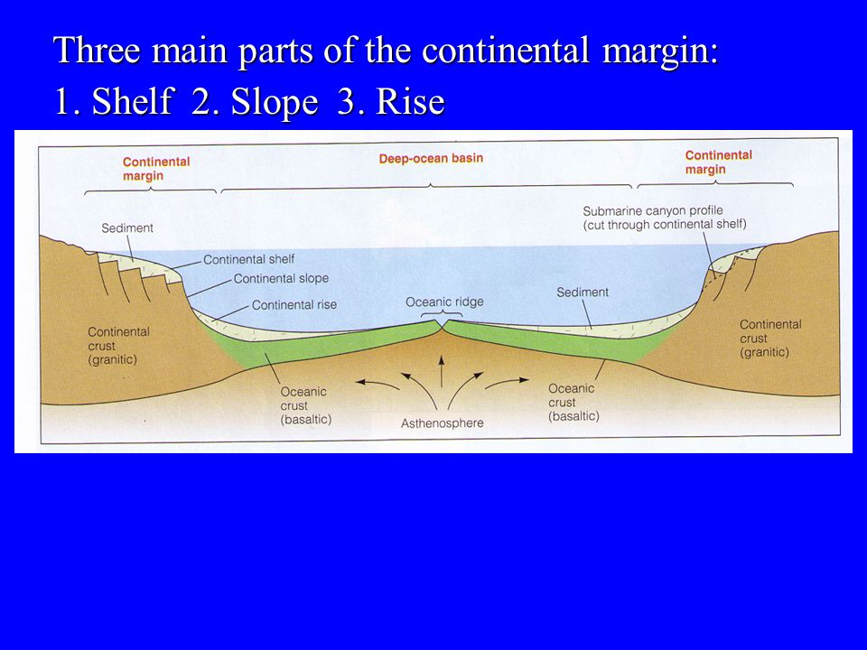Three main parts of the continental margin: