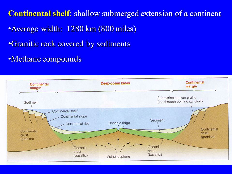 Continental shelf: shallow submerged extension of a continent