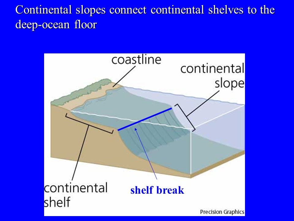 Continental slopes connect continental shelves to the deep-ocean floor