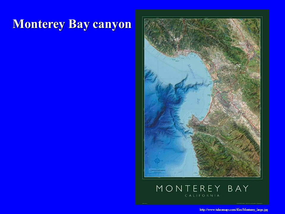 Monterey Bay canyon http://www.tahoemaps.com/files/Monterey_large.jpg
