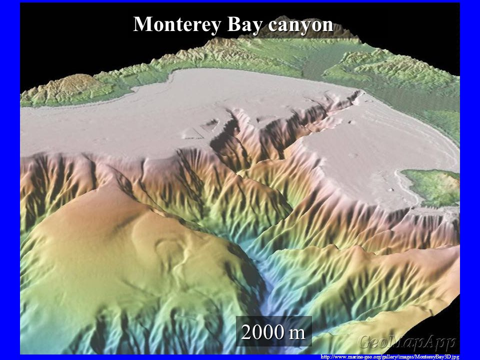 Monterey Bay canyon 2000 m http://www.marine-geo.org/gallery/images/MontereyBay3D.jpg