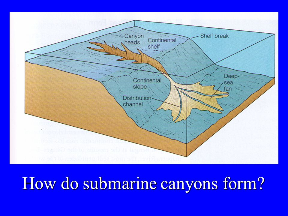 How do submarine canyons form