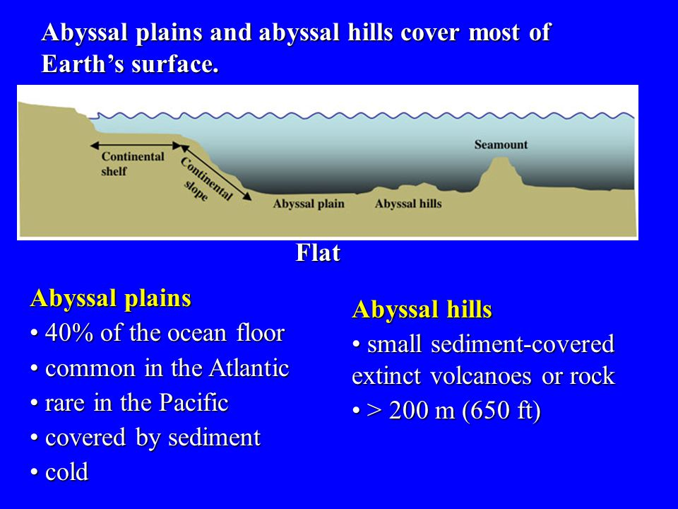Abyssal plains and abyssal hills cover most of Earth's surface.