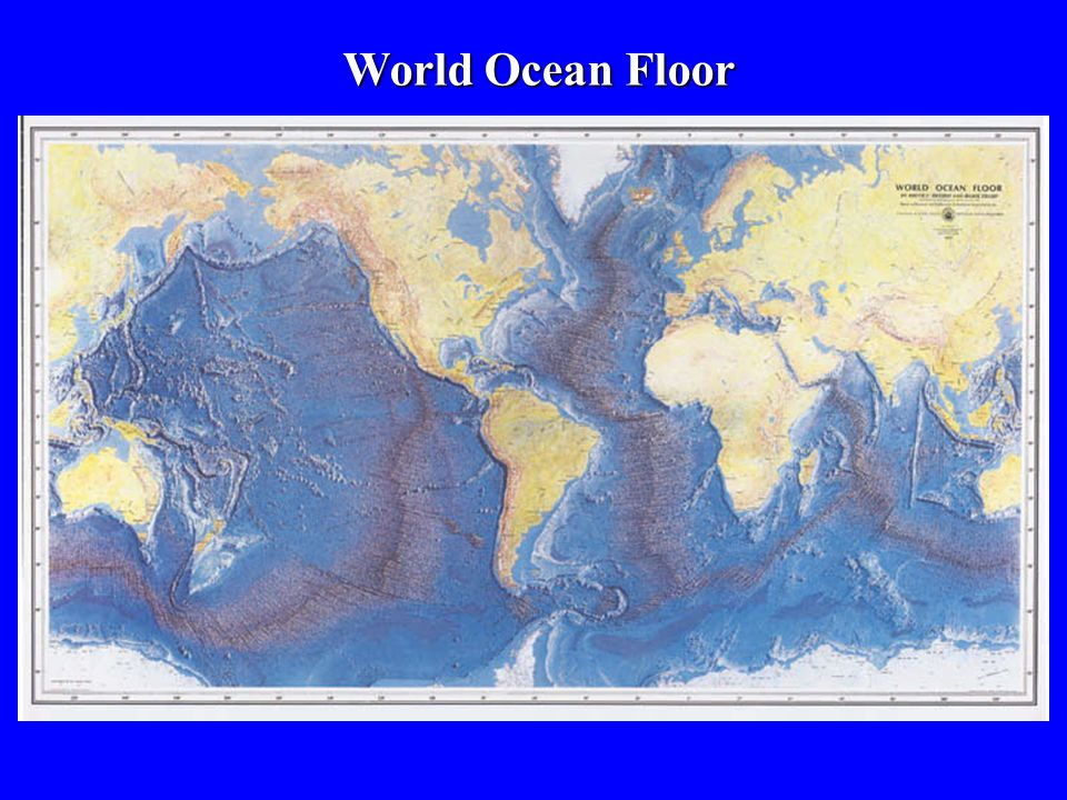 World Ocean Floor
