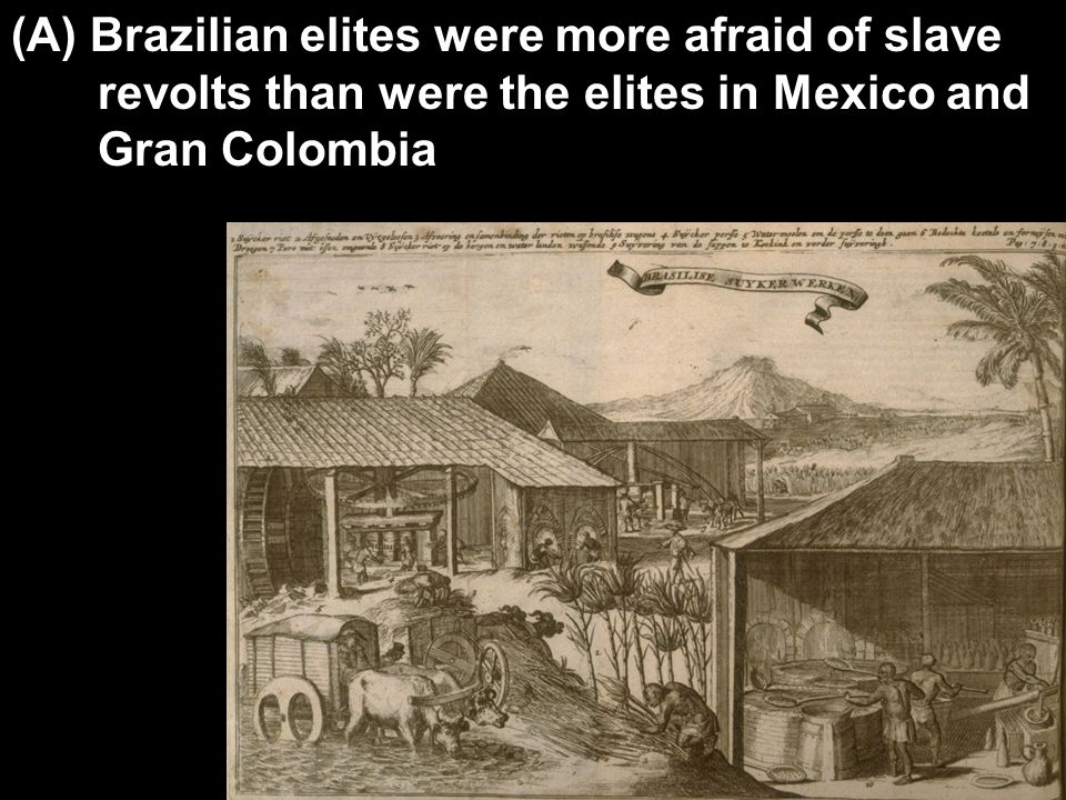 (A) Brazilian elites were more afraid of slave revolts than were the elites in Mexico and Gran Colombia