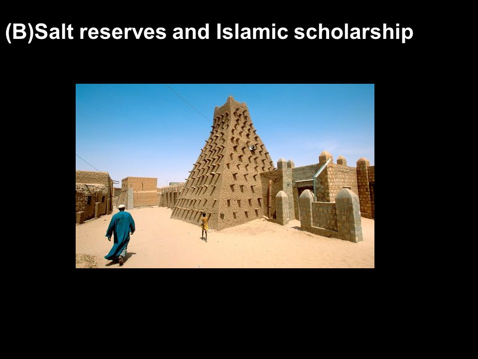 (B)Salt reserves and Islamic scholarship